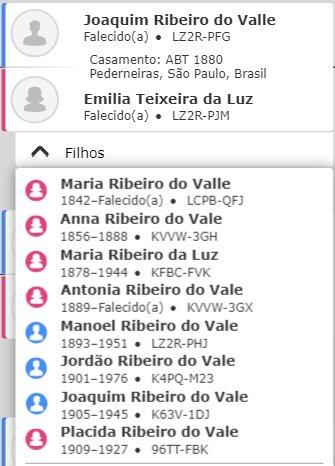 Erro na árvore genealógica: Emilia Teixeira da Luz teve filhos entre 1842 e 1909. Se for assim, ela engravidou pelo menos até os 80 anos de idade.