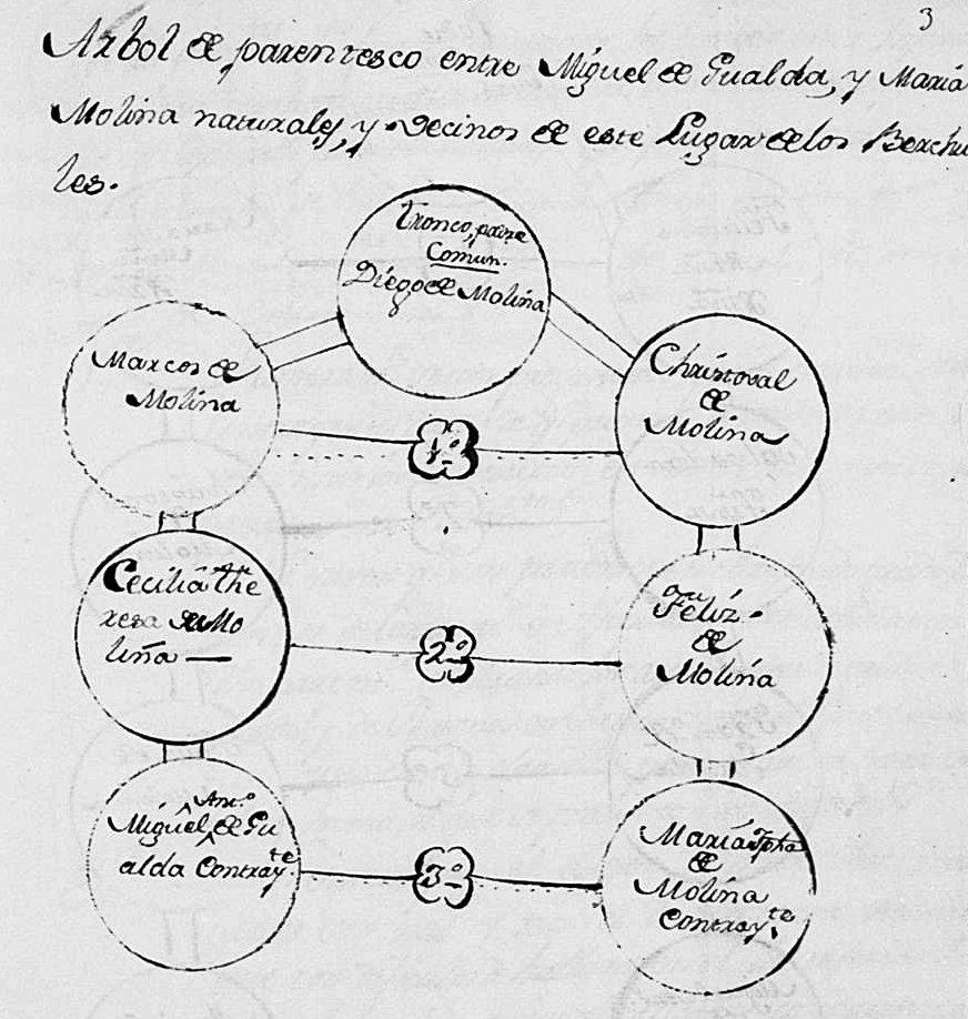 Árvore genealógica para mostrar grau de parentesco entre dois antepassados meus.