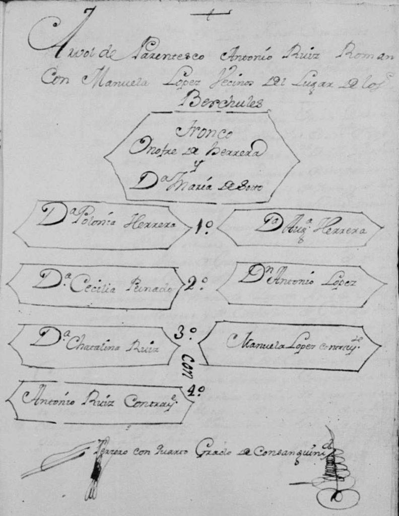 Exemplo de árvore genealógica que pode ser encontrada nas dispensas matrimoniais de Granada